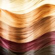 Hair Colors Palette. Hair Texture — Stock fotografie
