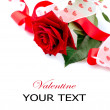 Valentines Gift. Rose Flower with Ribbon isolated on white — Stock Photo