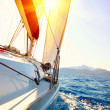 Yacht Sailing against sunset. Sailboat. Yachting. Sailing — Stock Photo