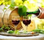 Queso y vino tinto. romántico almuerzo al aire libre — Foto de Stock