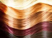 头发的颜色调色板。头发的质地 — 图库照片