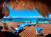 Wakacje w raju zwrotnik. isla mujeres, meksyk — Zdjęcie stockowe