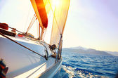 Yacht Sailing against sunset. Sailboat. Yachting. Sailing — Stok fotoğraf