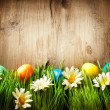Colorful Easter Eggs in Spring Grass and Flowers over Wood — Stock Photo #24592911