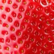 Strawberry Texture. Berry Background. Closeup Structure. Macro - Stock Photo