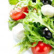 Salad with Mozzarella Cheese — Stock Photo