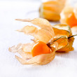 Physalis fruit - Stock Photo