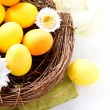 Easter. Painted Easter Eggs and Spring Flowers in the Nest — Stock Photo