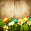 Colorful Easter Eggs in Spring Grass and Flowers over Wood - Stock Photo