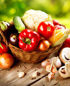 Healthy Organic Vegetables. Bio Food — Foto Stock