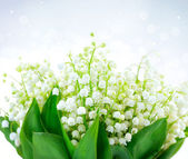 Lily-of-the-valley Flower Design. Bunch of White Spring Flowers — Stok fotoğraf