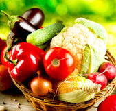Healthy Organic Vegetables. Bio Food — Foto de Stock