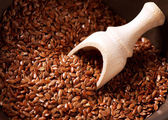 Flax seeds, Linseed, Lin seeds close-up — Stok fotoğraf
