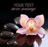 Zen kamienie i orchidea kwiat. masaż kamieniami — Zdjęcie stockowe