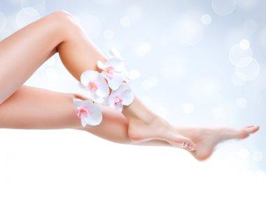 Healthy Legs. Spa. Long woman legs