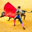 Corrida. Matador Fighting in a typical Spanish Bullfight — Stock Photo