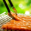 Grilled Sausage on the flaming Grill. BBQ. Bearbeque outdoors — Stock Photo