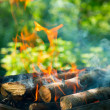 BBQ Fire outdoor. Bonfire closeup — Stok fotoğraf