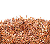 Linseed border isolated on White Background. Flax seeds — Stock Photo