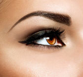 Brown Eye Makeup. Eyes Make-up — Foto de Stock