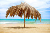 Vacation Concept. Palapa Sun Roof Beach Umbrella — Stock Photo