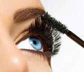 Mascara Applying. Long Lashes closeup — Stok fotoğraf