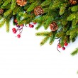 Christmas. Evergreen Fir tree Border Design — Stock fotografie