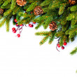 Christmas. Evergreen Fir tree Border Design — Stok fotoğraf
