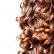 Stock Photo: Hair isolated on white. Border of Curly Brown Long Hair