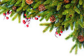 Christmas. Evergreen Fir tree Border Design — Zdjęcie stockowe
