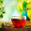 Cup of Tea over Blurred Nature Green background. Herbal Tea — Stock Photo #40234617