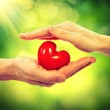 Valentine Heart in Man and Woman Hands over Nature Background — Stock Photo