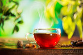Cup of Tea over Blurred Nature Green background. Herbal Tea — Stock Photo