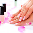Manicure and Hands Spa. — Stock Photo #48638403