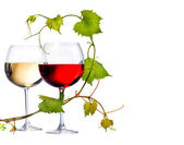 Two glasses of red and white wine — Stock Photo