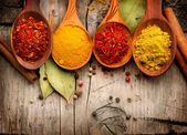 Spices and herbs. — Stockfoto