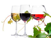 Three Glasses of wine — Stock Photo