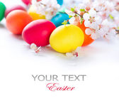 Colorful easter eggs with  flowers — Stock Photo