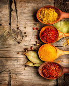 Various spices and herbs — Stock Photo