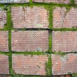 Foto Stock: Old Brick Wall with Moss