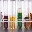 Colored liquids in test tube in holder — Stock Photo