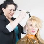 Постер, плакат: Hairdresser dyes hair