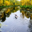 Small river in autumn - Stock Photo