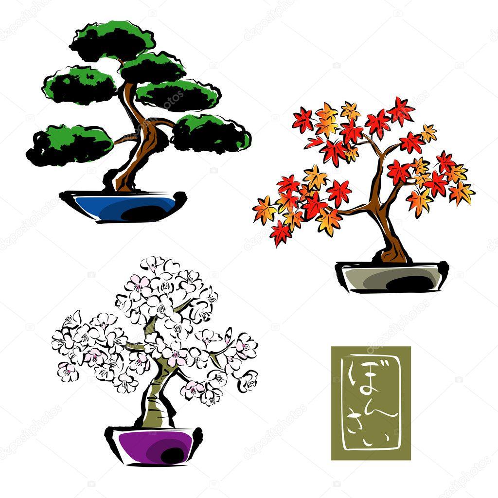 盆景松树, 日本枫树, 樱花, 樱花 — 矢量图片作者 niow