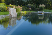 Laguna ráno — Stock fotografie
