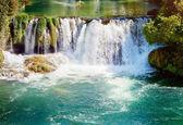 Waterfalls in national park. Krka National Park, Croatia — Stock Photo