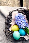 Colorful easter eggs  with hyacinth  in a nest on wooden backgro — Stock Photo
