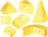Cheese photo-realistic set — Stock Vector