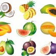 Stock Vector: Exotic fruits photo-realistic set