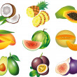 Exotic fruits photo-realistic set — Stock vektor